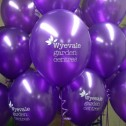 Wyevale Garden Centre Open Day